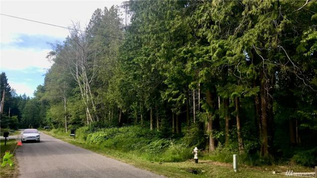 256 Shady Glen Lot 30-32 Ave, Point Roberts, WA 98281 (#1308614) :: Real Estate Solutions Group