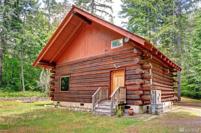 541 N Duckabush Dr N, Hoodsport, WA 98548 (#1308667) :: Crutcher Dennis - My Puget Sound Homes