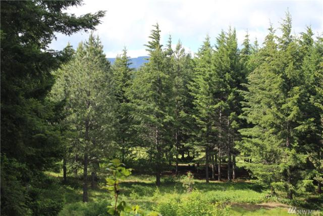 210 Gold Fountain Lane, Cle Elum, WA 98922 (#1308709) :: Real Estate Solutions Group