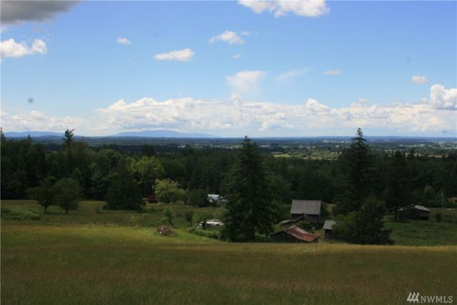 8116 N. Pass Rd, Everson, WA 98247 (#1309053) :: Real Estate Solutions Group