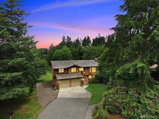 16320 176th Ave NE, Woodinville, WA 98072 (#1309057) :: Real Estate Solutions Group