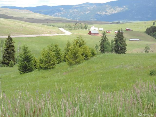 35 Moose Mtn Road, Oroville, WA 98844 (#1309457) :: Capstone Ventures Inc
