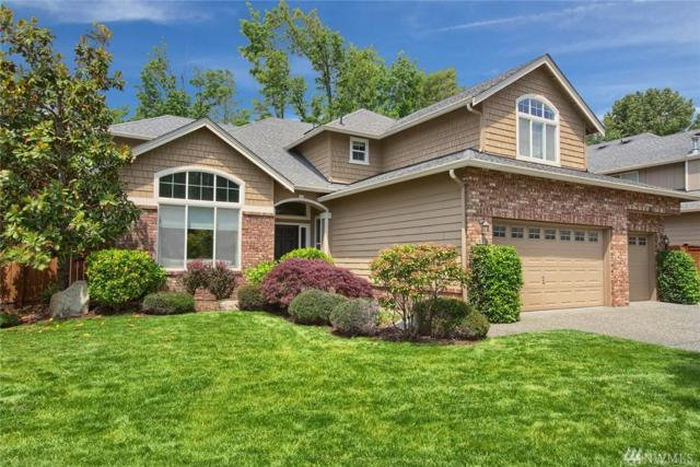 223 247th Place NE, Sammamish, WA 98074 (#1309647) :: Real Estate Solutions Group