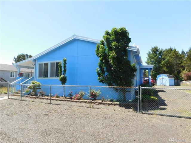 1287 Oceano Dr, Grayland, WA 98547 (#1309669) :: Chris Cross Real Estate Group