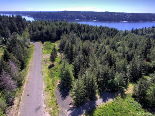 50-Lot 5 Cottonwood Dr, Grapeview, WA 98546 (#1309681) :: Real Estate Solutions Group