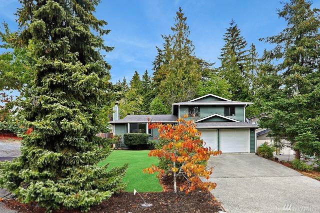 17323 18th Ave SE, Bothell, WA 98012 (#1310171) :: Homes on the Sound