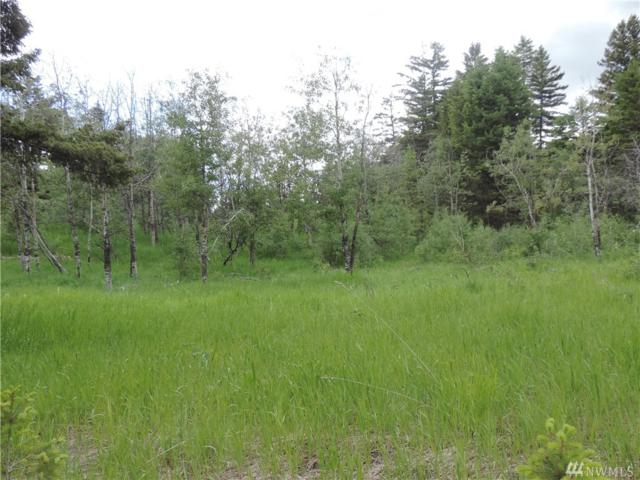 70-Lot P Moose Mtn Rd, Oroville, WA 98844 (#1310263) :: Mike & Sandi Nelson Real Estate