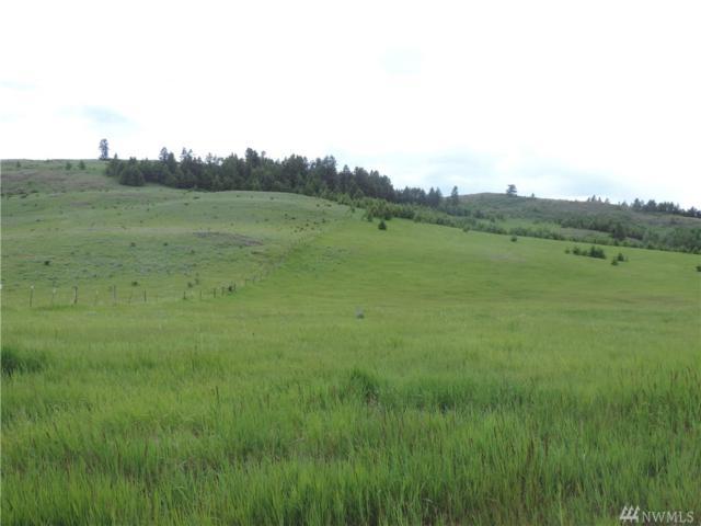 90-(Lot W1) Moose Mtn Rd, Oroville, WA 98844 (#1310359) :: Brandon Nelson Partners