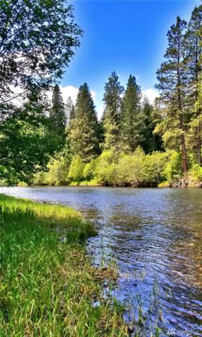 0-Lot 19 Kiias Elk Trail, Cle Elum, WA 98922 (#1310362) :: Real Estate Solutions Group