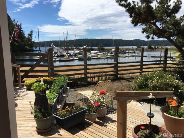 376 Killebrew Lake Rd, Orcas Island, WA 98280 (#1310369) :: Alchemy Real Estate