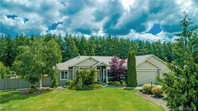 18214 Wild Violet Lane SW, Rochester, WA 98579 (#1310477) :: Real Estate Solutions Group