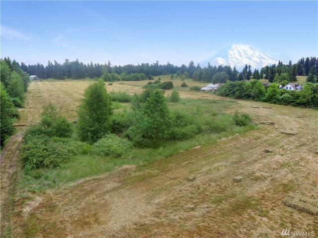44110 228th Ave SE, Enumclaw, WA 98022 (#1310854) :: Real Estate Solutions Group