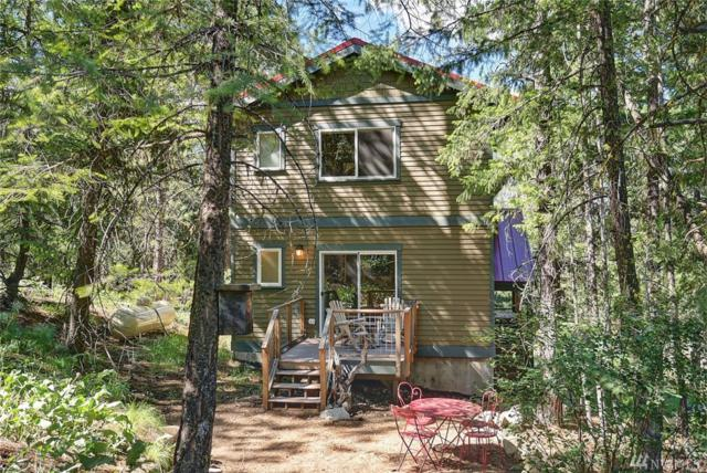 3 Mustard Mountain Rd, Winthrop, WA 98862 (#1311702) :: Real Estate Solutions Group