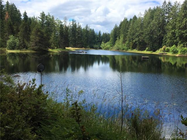 270 E Emerald Lake Dr E, Grapeview, WA 98546 (#1311729) :: Real Estate Solutions Group