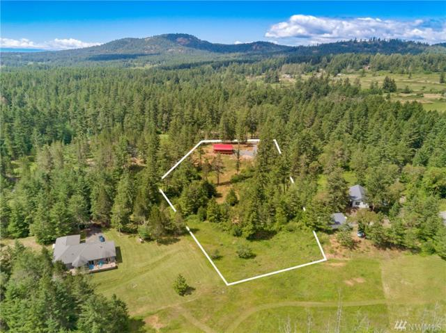 171 Timber Lane, Friday Harbor, WA 98250 (#1311796) :: Real Estate Solutions Group