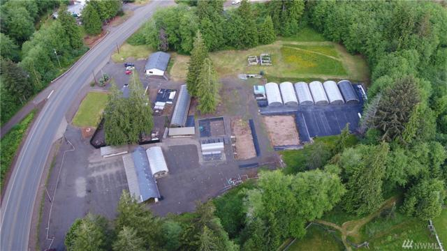828 Highway 101, Hoquiam, WA 98550 (#1312162) :: The Home Experience Group Powered by Keller Williams