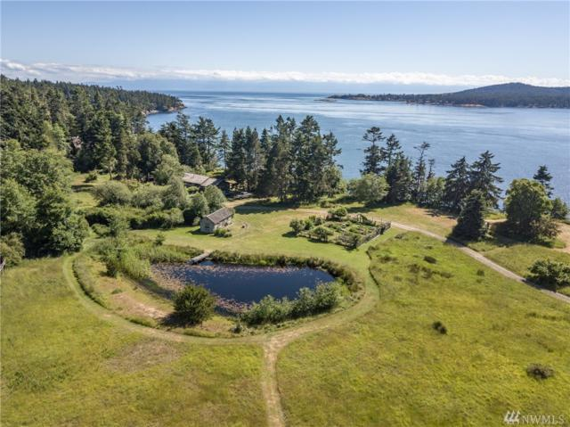 357 Meadow Lane, Lopez Island, WA 98261 (#1312342) :: The Home Experience Group Powered by Keller Williams