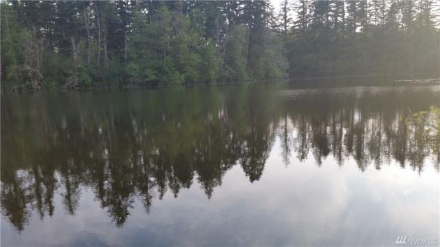 505 E O'farrell Cuttoff E, Bonney Lake, WA 98391 (#1312349) :: Keller Williams - Shook Home Group