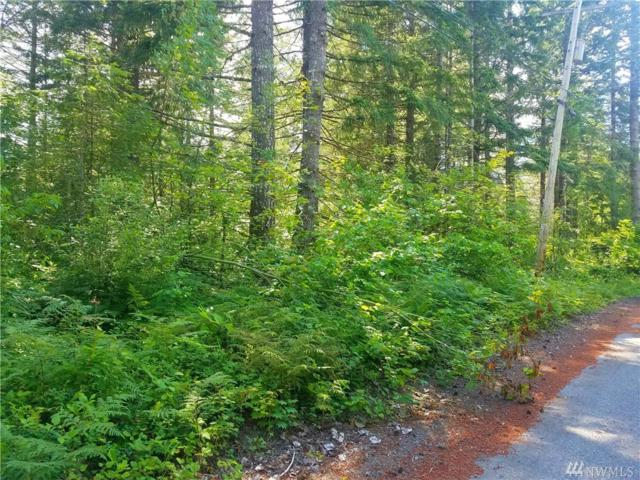 0 Timberline Dr, Packwood, WA 98361 (#1312457) :: Homes on the Sound