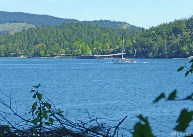 52 Dock Rd, Orcas Island, WA 98245 (#1312598) :: Homes on the Sound