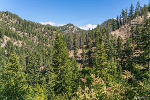 0 Bjork Canyon Rd, Leavenworth, WA 98826 (#1312762) :: NW Home Experts