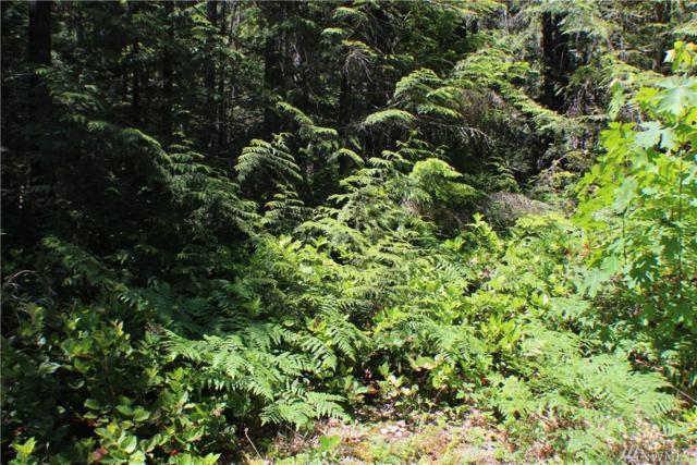 321 N Mt Jupiter Dr, Hoodsport, WA 98548 (#1312794) :: Crutcher Dennis - My Puget Sound Homes