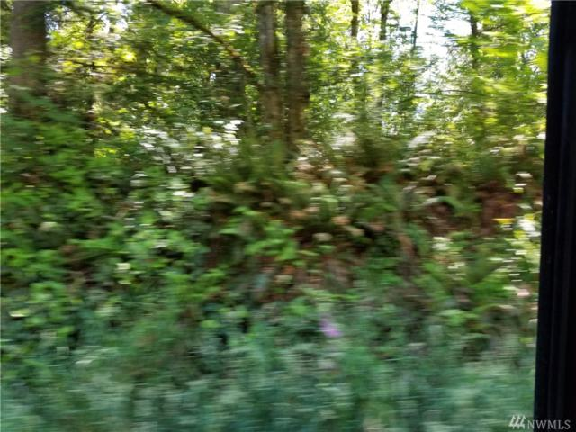 39 SE Sedgwick Rd, Port Orchard, WA 98366 (#1312878) :: Crutcher Dennis - My Puget Sound Homes