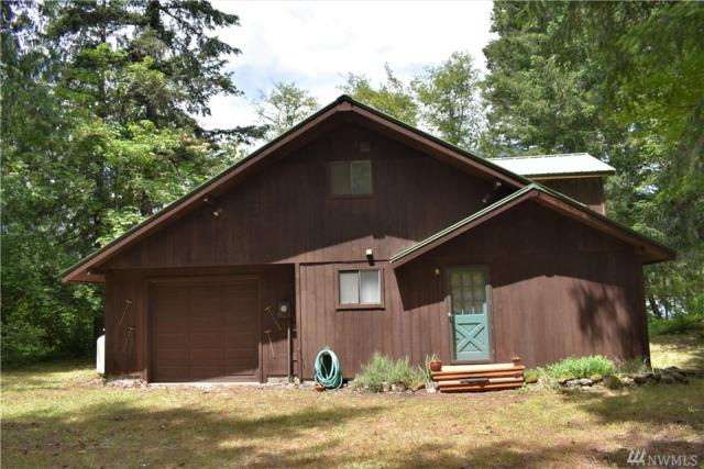 163 Tatoosh View Dr, Packwood, WA 98361 (#1313022) :: Real Estate Solutions Group