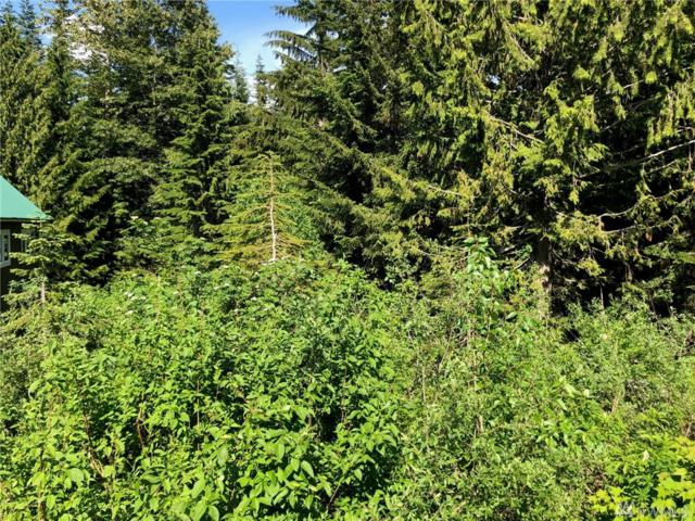 0-Lot 56 Snoqualmie Dr, Snoqualmie Pass, WA 98068 (#1313042) :: Icon Real Estate Group