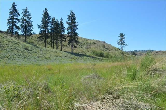 0 Highway 97, Malott, WA 98829 (#1313072) :: Canterwood Real Estate Team