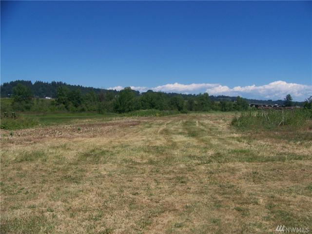 590 SW Hillburger Rd, Chehalis, WA 98532 (#1313221) :: Real Estate Solutions Group