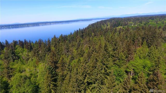 0 Clausen Rd, Anderson Island, WA 98303 (#1313288) :: Real Estate Solutions Group