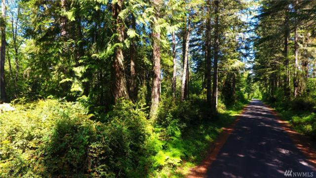 0 Clausen Rd, Anderson Island, WA 98303 (#1313292) :: Real Estate Solutions Group