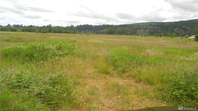 0-XX E Little Island Rd, Cathlamet, WA 98612 (#1313376) :: Real Estate Solutions Group