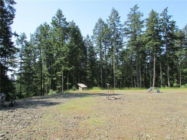 300-XX Guthrie Cove Rd, Orcas Island, WA 98280 (#1313382) :: Crutcher Dennis - My Puget Sound Homes