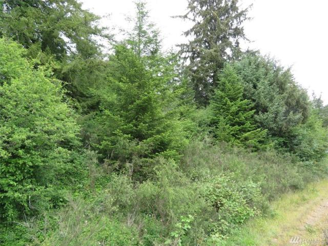 0 Hwy 101, Humptulips, WA 98552 (#1313588) :: Homes on the Sound