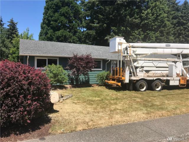 716 Dennis St SW, Tumwater, WA 98501 (#1313631) :: Crutcher Dennis - My Puget Sound Homes