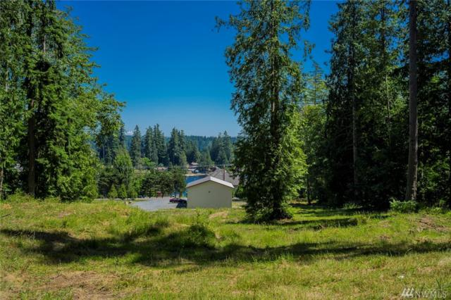 151-xx 56th Ave Nw, Stanwood, WA 98292 (#1313788) :: Real Estate Solutions Group
