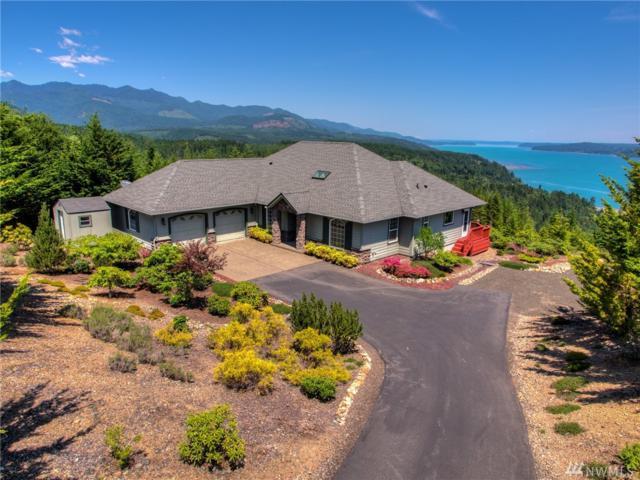 800 N Hamma Ridge Dr, Lilliwaup, WA 98555 (#1314032) :: Real Estate Solutions Group