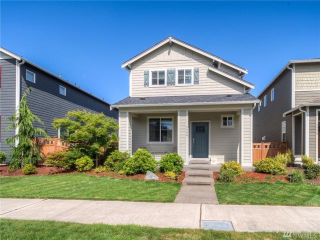 3344 Hydra St NE, Lacey, WA 98516 (#1314034) :: Northwest Home Team Realty, LLC
