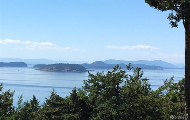 0 Dancing Deer Dr, Orcas Island, WA 98245 (#1314153) :: Keller Williams Realty