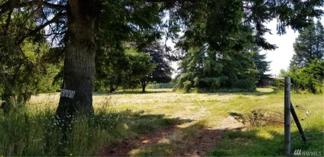 148 Enchantment Lane, Vader, WA 98593 (#1314213) :: Icon Real Estate Group