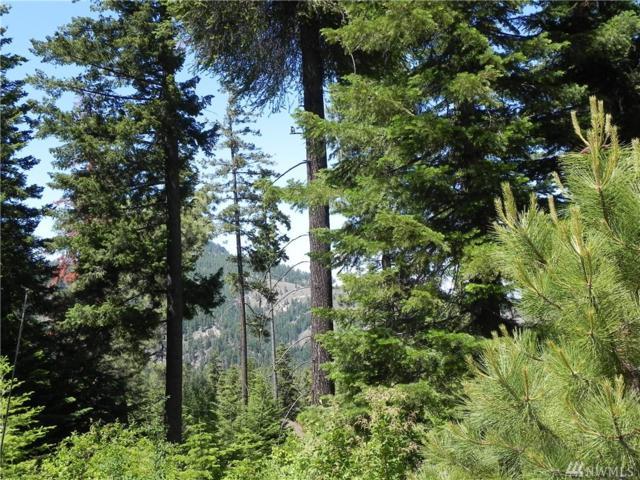 6776 Forest Ridge Dr, Wenatchee, WA 98801 (#1314378) :: Nick McLean Real Estate Group