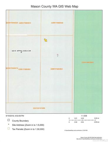 4-XX E Appaloosa Dr, Shelton, WA 98584 (#1314575) :: Icon Real Estate Group