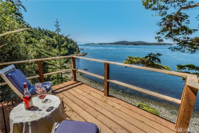 1224 Shark Reef Rd, Lopez Island, WA 98261 (#1314792) :: The Home Experience Group Powered by Keller Williams
