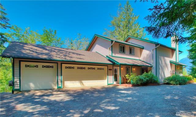 5791 N Lake Cushman Rd, Hoodsport, WA 98548 (#1314947) :: Icon Real Estate Group