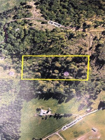 198 Brier Rd, Centralia, WA 98531 (#1315140) :: Tribeca NW Real Estate