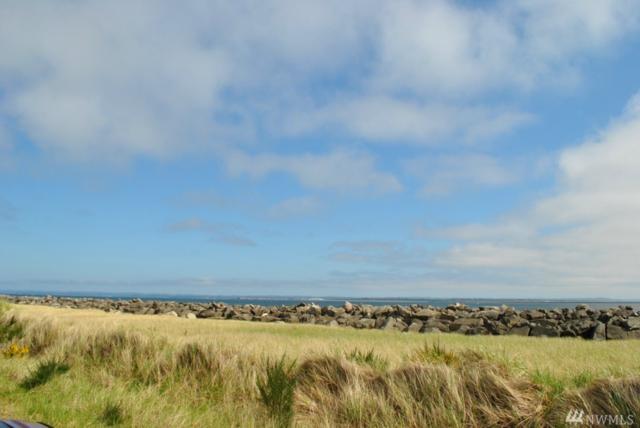 1491 E Ocean Shores Blvd SW, Ocean Shores, WA 98569 (#1315570) :: The Home Experience Group Powered by Keller Williams