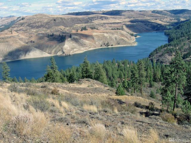 1 Bobcat Trail E, Creston, WA 99117 (#1316195) :: Homes on the Sound