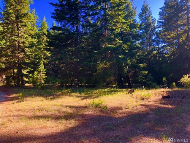0-XXX Tree Haven Rd, Cle Elum, WA 98922 (#1316242) :: Real Estate Solutions Group